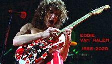 1970s Young Eddie Van Halen tribute fridge magnet - new!