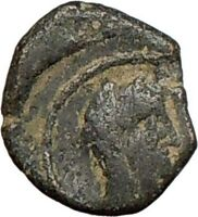 Arab Nabataea Kingdom Syllaeus & Aretas IV  9BC Ancient Greek Coin RARE  i24029
