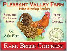 Rare Breed Chickens Fresh Farm Eggs Shop Free Range Hen Large Metal/Tin Sign