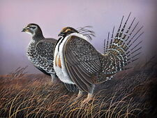 Greater Sage Grouse Bird Print 11 x 14 by Doug Walpus Wildlife Art Upland Birds