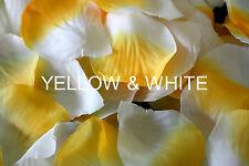 Rose Petals, 100 Silk Petals, 22 Colours Available. Romantic Decorations