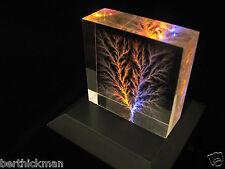 """Captured Lightning"" Lichtenberg Figure Beam Tree sculpture - Tesla inspired!"