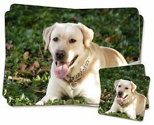 Yellow Labrador Dog Twin 2x Placemats+2x Coasters Set in Gift Box, AD-L48PC