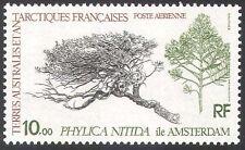 "FSAT/TAAF 1980 ""Phylica nitida/""Plants/Nature 1v  n23210"