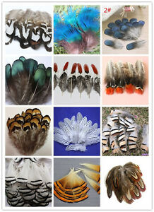 10-100PCS Beautiful Pheasant Tail & Peacock Feathers 4-10cm/2-4inches