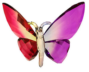 Crystal Expressions Acrylic 4x6 Inch Butterfly Ornament/ Sun-Catcher