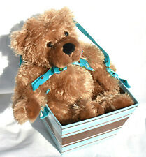 DanDee Collector's Choice Teddy Bear Chocolate Scent In Box/Basket w/Ribbon
