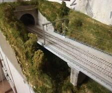 Diorama ferroviario DST1