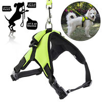 No Pull Adjustable Dog Pet Vest Harness Quality Nylon Small/Medium/Large/XL USA