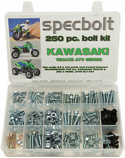250pc Bolt Kit Kawasaki Tecate KXF250 KXT 250 body plastics frame fenders engine