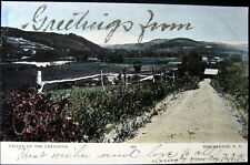 Binghamton New York ~ 1906 Valley Of The Chenango ~Greetings from
