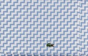 2 LACOSTE Allure Blue White Stripes Appliqued Alligator Standard Pillowcases NIP