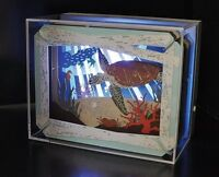 Ensky PAPER THEATER Light Up Display Case (Case Only!) Japan