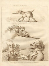 "1808 copper engraving from the "" academy for grown horsemen "" puzzle  horse- dog"