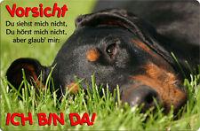 DOBERMANN - A4 Metall Warnschild SCHILD Hundeschild Alu Türschild - DBM 34 T2