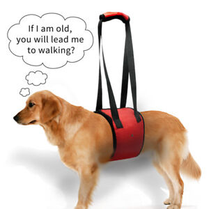 Dog Back Carrier Lift Harness Dogs Lift Support Rehabilitation Harness Red S-XL