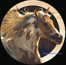 Spirit Horse! Thirstystone Coasters Set 4 Made Usa drink Wild Mustang Paint New