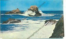 LAGUNA BEACH, CALIFORNIA SEAL AND BIRD ROCKS  (CA-L2*)