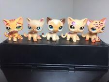 5pcs Littlest Pet Shop Cats LPS #816 #1451 #1962 #2218 #3573  Short Hair