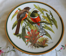 """COLLARED TROGON PLATE WOODLAND BIRDS OF THE WORLD 10 1/2"""""""