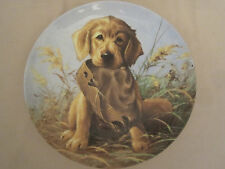 Caught In The Act - Golden Retriever Collector Plate Lynn Kaatz Hunting Dog
