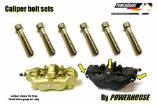 Kawasaki ZX 12 R Ninja 04-06 Stainless joint bolt set front brake calipers