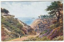BOURNEMOUTH - Durley Chine - A R Quinton #918 - J Salmon published - c1920s era
