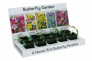 Grow Your Own Butterfly Garden Flowers Eco Kit 5 different Seed Varieties