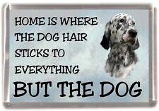 "English Setter Dog Fridge Magnet ""Home is Where"" Design by Starprint"