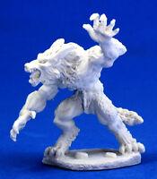 1 x LOUP GAROU - BONES REAPER figurine miniature d&d jdr werewolf beast 77009