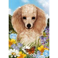 Summer House Flag - Apricot Poodle 18016