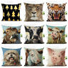 DOG ANIMAL OIL PAINTING STYLE CUSHION COVER DECORATIVE THROW PILLOW CASE SMART