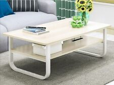 Living TV Lounge Room Office Reception Area Magazine Storage Shelf Coffee Table