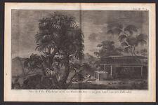 VUE DE L'ILE D'HUAHINE ou DE LA FEMME Gravure Voyage de James COOK 1774