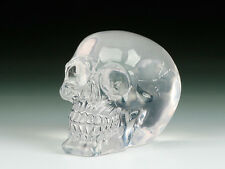 SKULL CRYSTAL SKELETON FIGURINE STATUE HALLOWEEN