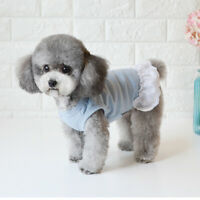 Himmelblau süßes Hund kurzes Kleid Sommer Pompon Hund atmungsaktive Spitze
