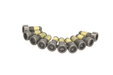 SET OF FLYWHEEL BOLTS LUK 411 0161 10