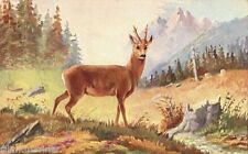 Deer Posted Printed Collectable Postcards