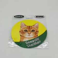 Tabby Yellow Domestic Shorthair Cat Magnet Car Truck Refrigerator Free Ship