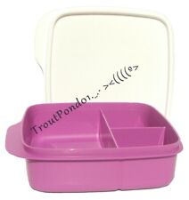 TUPPERWARE Lunch It Divided Dish Storage Container Box Mulberry Purple New