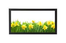 12x36 Panoramic Frame - Wide Satin Black