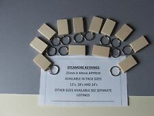 KEYRING BLANKS-pyrography,painting or engraving-not plywood-12 in pack £4.45+car
