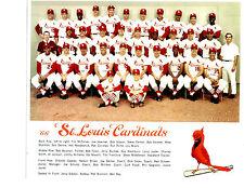 1966 ST. LOUIS CARDINALS 8X10 TEAM PHOTO CARLTON BROCK BASEBALL HOF MISSOURI