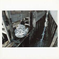 Magnum Phaidon Postcard Georgetown, Pinang Island, Malaysia Dockside