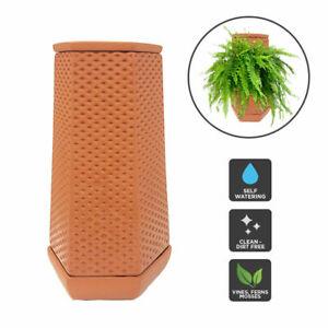 Self Watering Ceramic Planter Flower Pots Automated Automatic Terraplanter AU