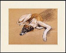 Levriero Whippet Lurcher art print poster di pittura-opzioni di montaggio disponibili