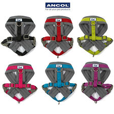 Ancol Padded Dog Harness Viva Reflective Soft Strong Durable Quick Fit Puppy