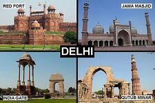 SOUVENIR FRIDGE MAGNET of DELHI INDIA