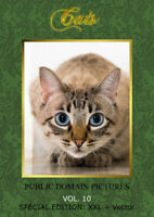 Cats, Collection of Photos, Public Domain, XXL Pics without Copyright, on DVD