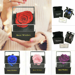 Best Wish Eternal Rose Preserved Flower with Jewelry Box Wish